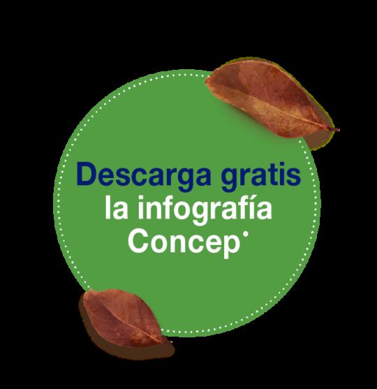 Materiales_Descarga_OCTUBRE_botón-04